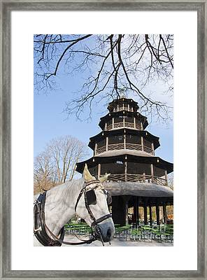 Chinese Pagoda  Framed Print by Andrew  Michael