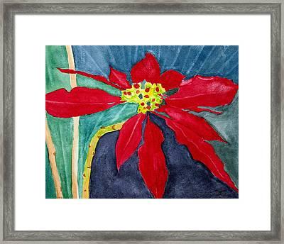 Christmas Flower Framed Print by Charlotte Hickcox