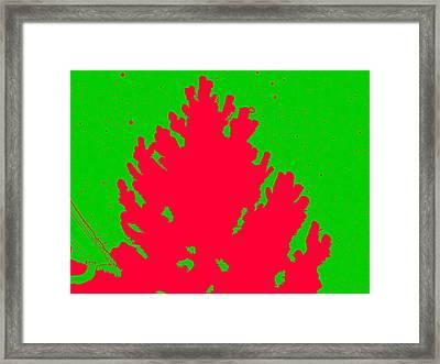 Christmas Splatter Framed Print by Jimi Bush