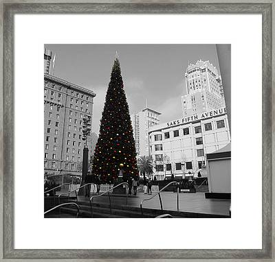 Christmas Tree-union Square Framed Print by Douglas Barnard