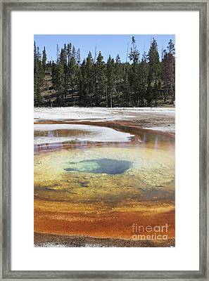 Chromatic Pool Hot Spring, Upper Geyser Framed Print by Richard Roscoe