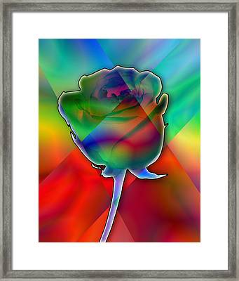 Chromatic Rose Framed Print by Anthony Caruso