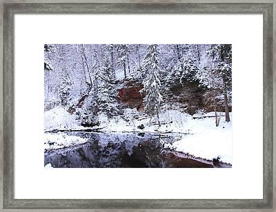 Cirulisi Framed Print by Igors Parhomciks