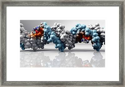 Cisplatin Cancer Drug And Dna Molecule Framed Print by Phantatomix