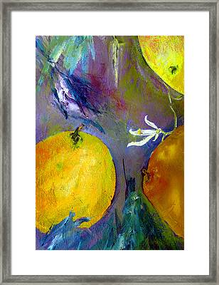 Citrus 3 Framed Print by Beverly  Koski