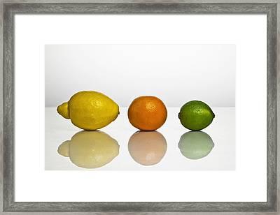 Citrus Fruits Framed Print by Joana Kruse