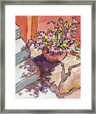 Clay Pot Framed Print by Sandy Tracey