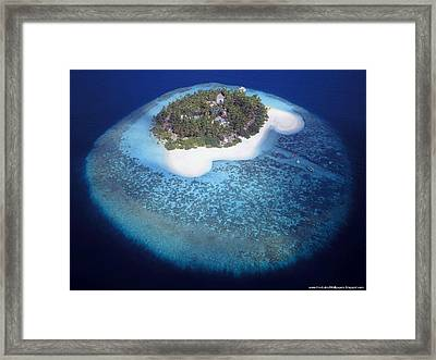 Clear Shot Framed Print by Unknown