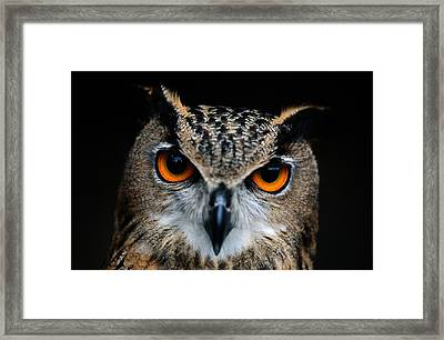 Close Up Of An African Eagle Owl Framed Print by Joel Sartore