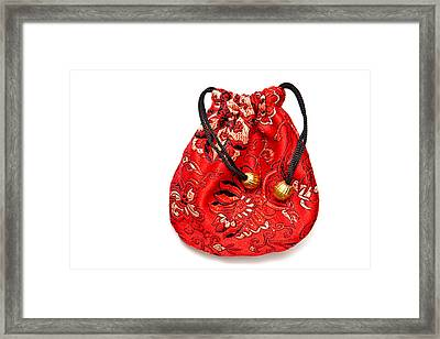 Cloth Purse Framed Print by Tom Gowanlock