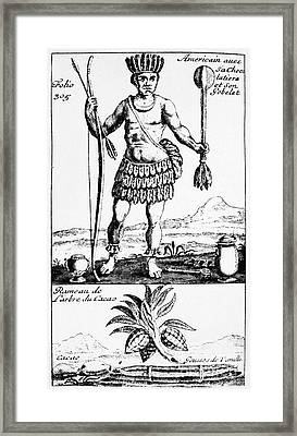 Cocoa, 1685 Framed Print by Granger