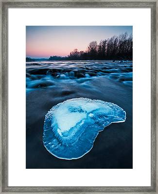 Cold Blue Framed Print by Davorin Mance