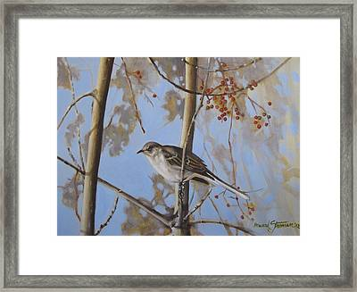 Cold Day Framed Print by Howard Stroman
