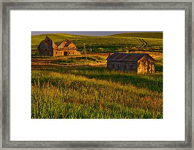 Collapsed Framed Print by Dan Mihai