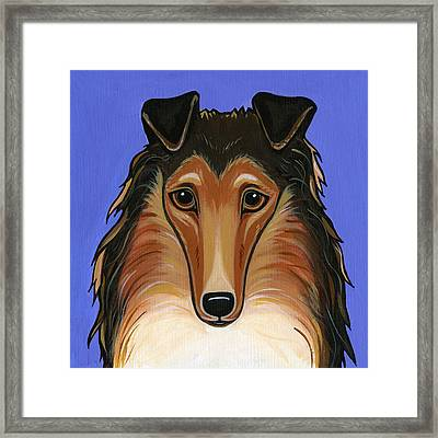 Collie Rough Framed Print by Leanne Wilkes