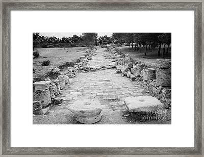 Colonnaded Street In The Ancient Site Of Salamis Famagusta Turkish Republic Of Northern Cyprus Trnc Framed Print by Joe Fox