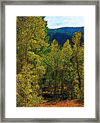 Colorado Aspens Framed Print by Howard Perry