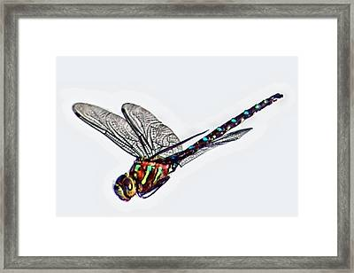 Colorful Dragon Framed Print by Don Mann