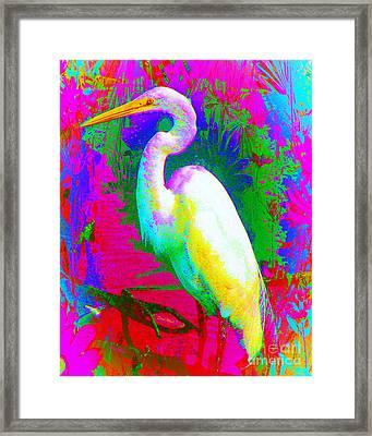 Colorful Egret Framed Print by Doris Wood