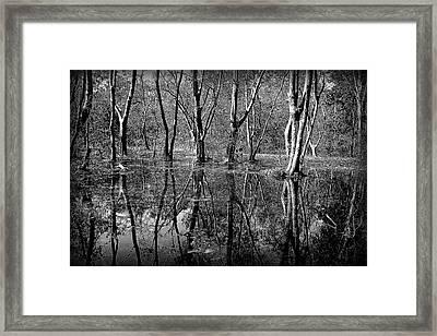 Colorless Serenity Framed Print by Greg Palmer