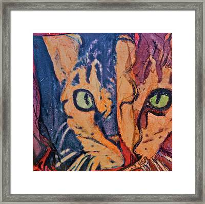 Colors Of A Cat Framed Print by Ruth Edward Anderson