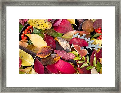 Colors Of Autumn Framed Print by Shane Bechler