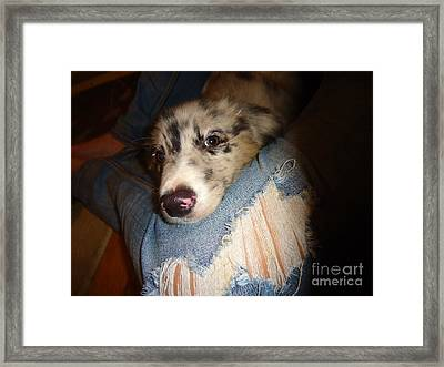 Comfy Blues Framed Print by Michelle Milano