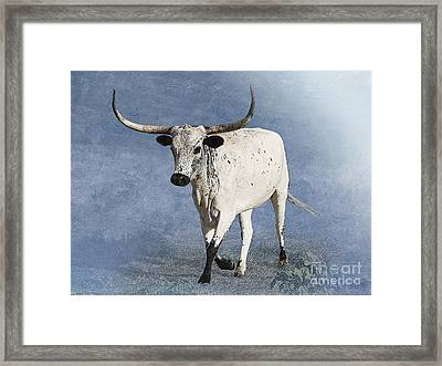 Coming Home Framed Print by Betty LaRue