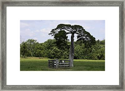 Confederate Grave Of Lafayette Meeks Appomattox Virginia Framed Print by Teresa Mucha
