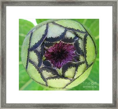 Conversational Framed Print by Tina Marie