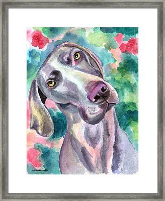 Cookie - Weimaraner Dog Framed Print by Lyn Cook
