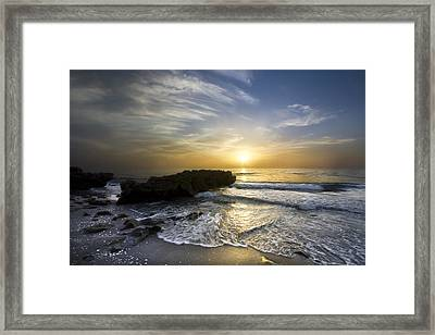 Coral Shoreline Framed Print by Debra and Dave Vanderlaan