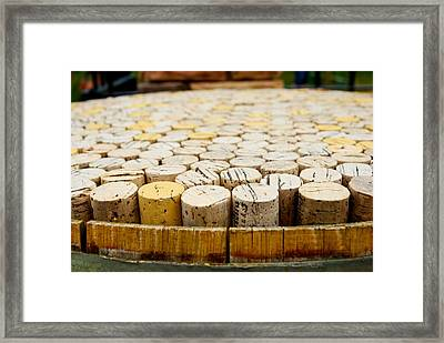 Corks Framed Print by Calvin Wray