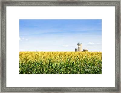 Corn Field With Silos Framed Print by Elena Elisseeva
