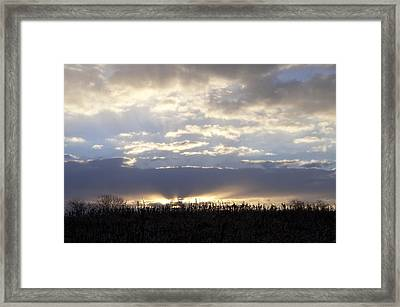 Cornfield Sunrise Framed Print by Bill Cannon