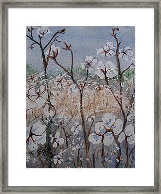 Cotton Patch Framed Print by Spencer  Joyner