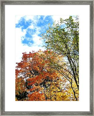 Country Color 1 Framed Print by Will Borden