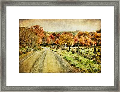 Country Lane Framed Print by Darren Fisher