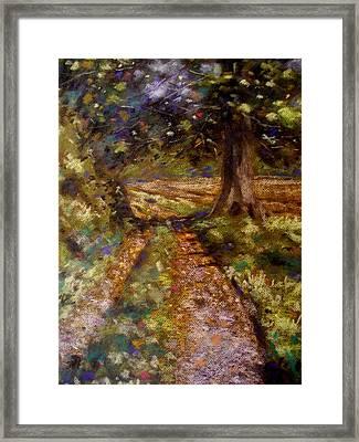 Country Lane Framed Print by John  Nolan