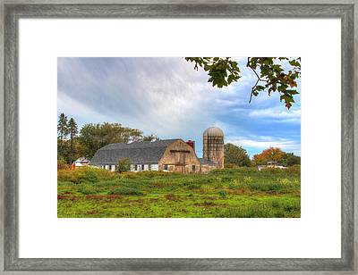Country Living  Framed Print by Andrew Pacheco