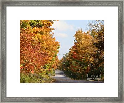 Country Road Framed Print by Beverly Livingstone