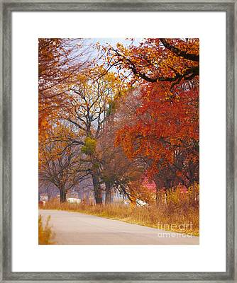 Countryside Foliage Framed Print by Gabriela Insuratelu