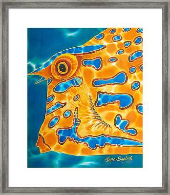 Cow Fish Framed Print by Daniel Jean-Baptiste