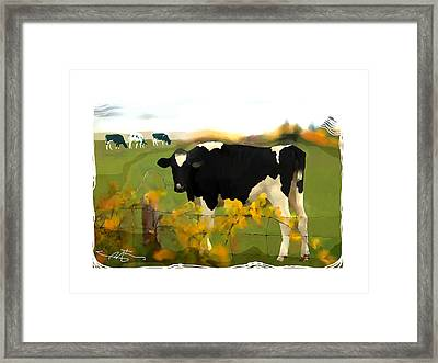 Cow Folk Framed Print by Bob Salo