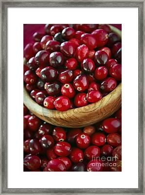 Cranberries In A Bowl Framed Print by Elena Elisseeva