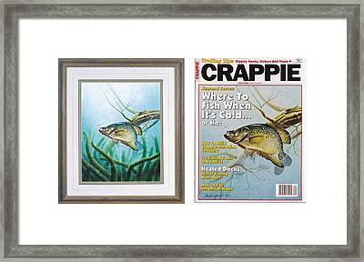 Crappie And Coon Tail Cover Framed Print by JQ Licensing