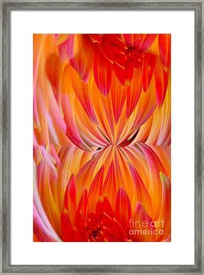 Creation Framed Print by Lj Lambert