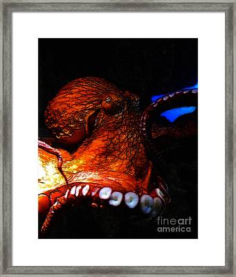 Creatures Of The Deep - The Octopus - V6 - Orange Framed Print by Wingsdomain Art and Photography