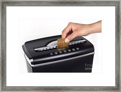 Credit Card Cutting Framed Print by Blink Images