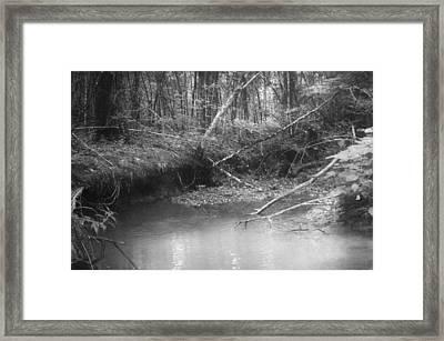 Creek Framed Print by Floyd Smith